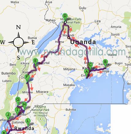 21 day gorilla tour