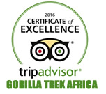 gorilla trek africa Tripadvisor page