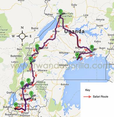 15 days uganda rwanda gorilla safari