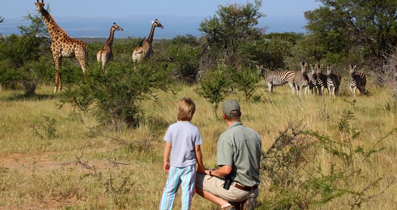 rwanda family safari