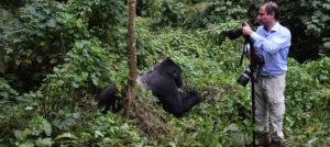 Gorilla Video shoting