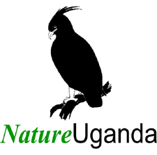Partners of Gorilla Trek Africa