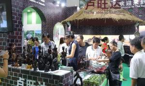 Rwanda Tourism in China