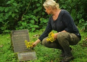 4 Dsys Rwanda gorilla & Dian Fossey hike