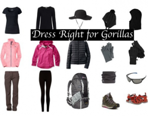 What to wear for gorillas