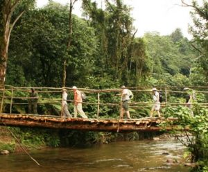 How long is a hike to see gorillas in Bwindi