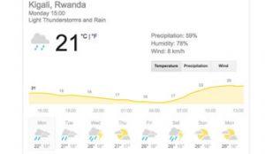 When to visit gorillas gorillas in Rwanda