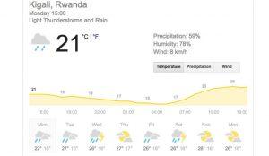 Best time to trek gorilla in Rwanda