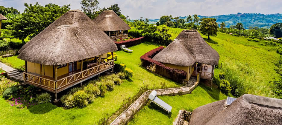 Lodges in Kibale Forest National Park