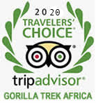 Gorilla Trek Trip advisor reviews