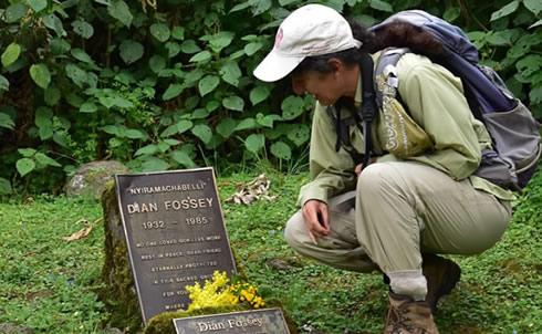 Rwanda gorillas and Dian Fossey