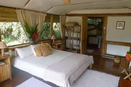 Luxury Lodges in Buhoma