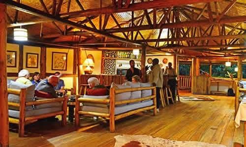Luxury Lodges in Bwindi Forest